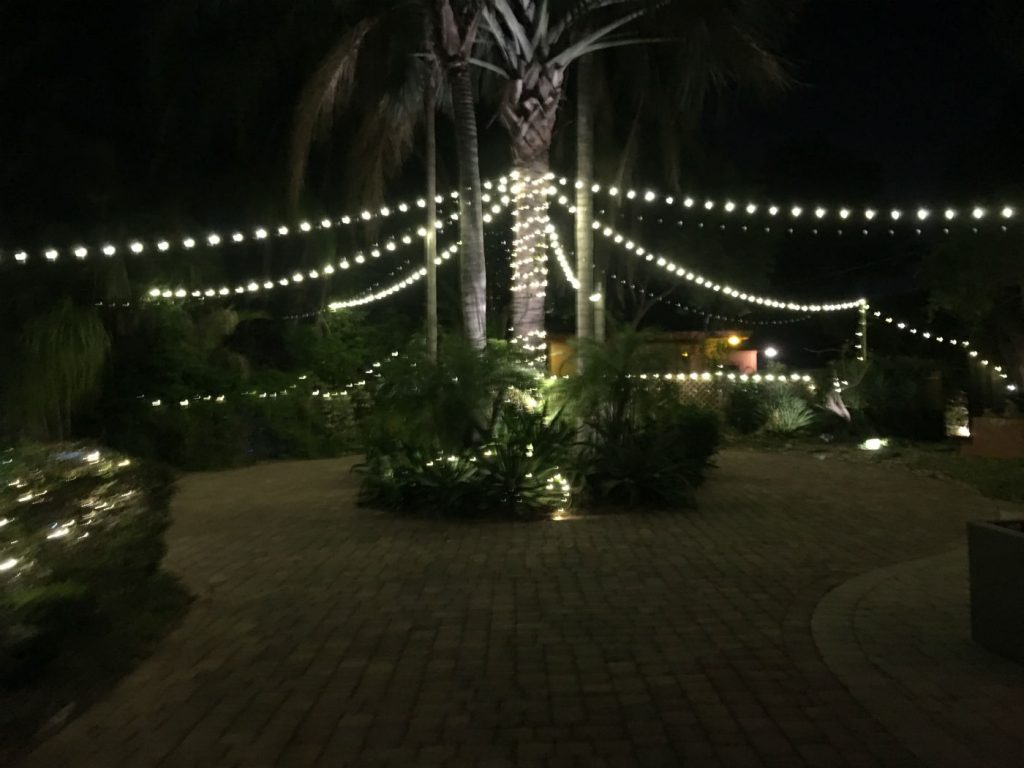 tropical lodging, boaters, urban oasis, paradise house,, Finding Tropical Lodging in Orlando for a Jimmy Buffett Concert