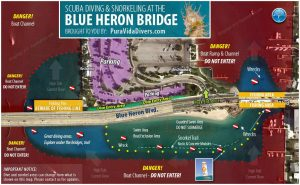 diving blue heron bridge and deep b, Diving Riviera Beach: Blue Heron Bridge Shore Dive and Offshore With Deep Obsession