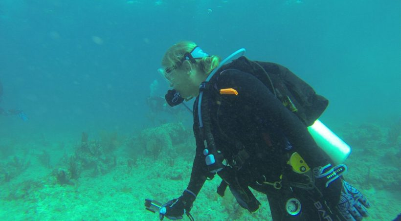 , The Trip to SCUBA Diving with Stuart Cove's Dive Bahamas – New Providence, Bahamas