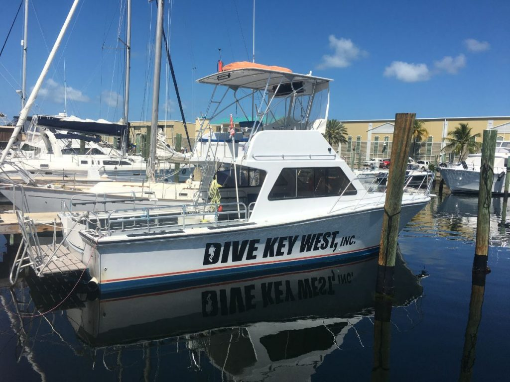 , Ultimate Florida Keys Road Trip // Key West Dive Trip