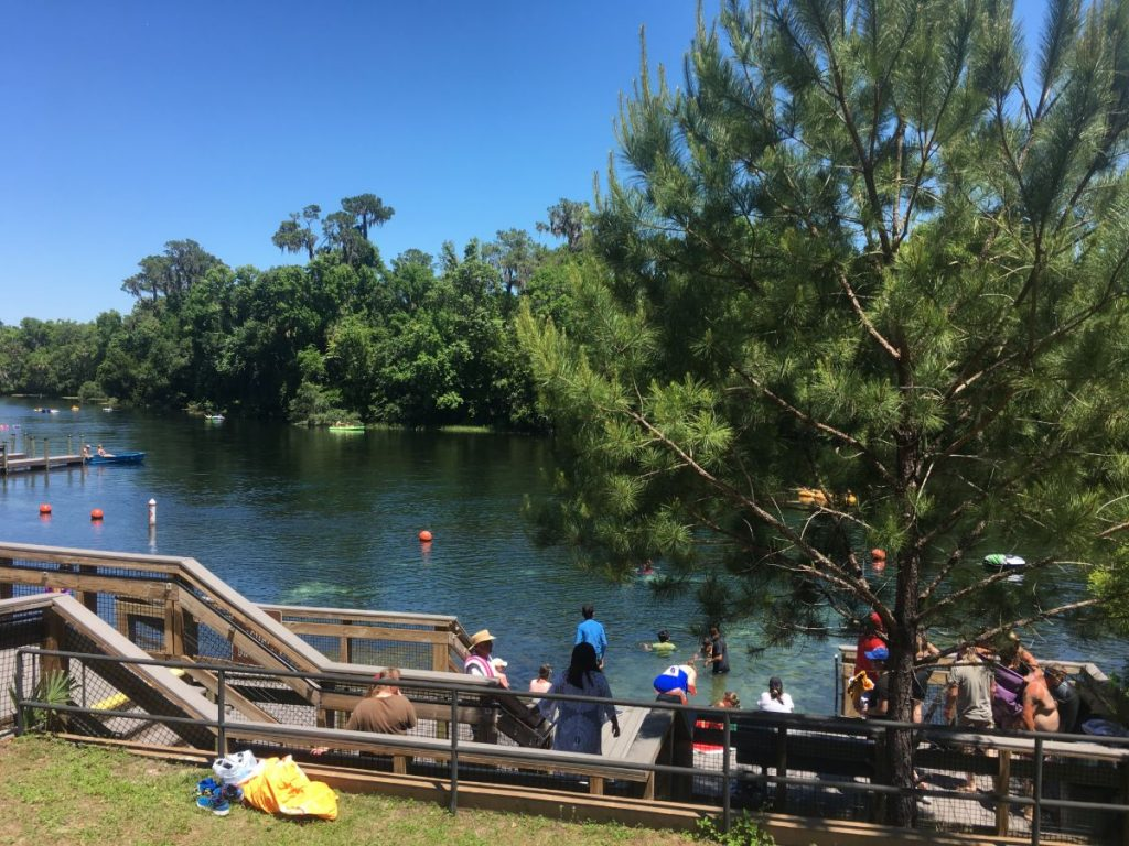 , Diving at KP Hole Park on the Rainbow River  //  Dunellon Florida // Vents and Geology Lesson