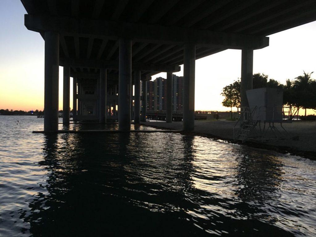 , Fast Three-Day Weekend of Diving at Blue Heron Bridge // Riviera Beach