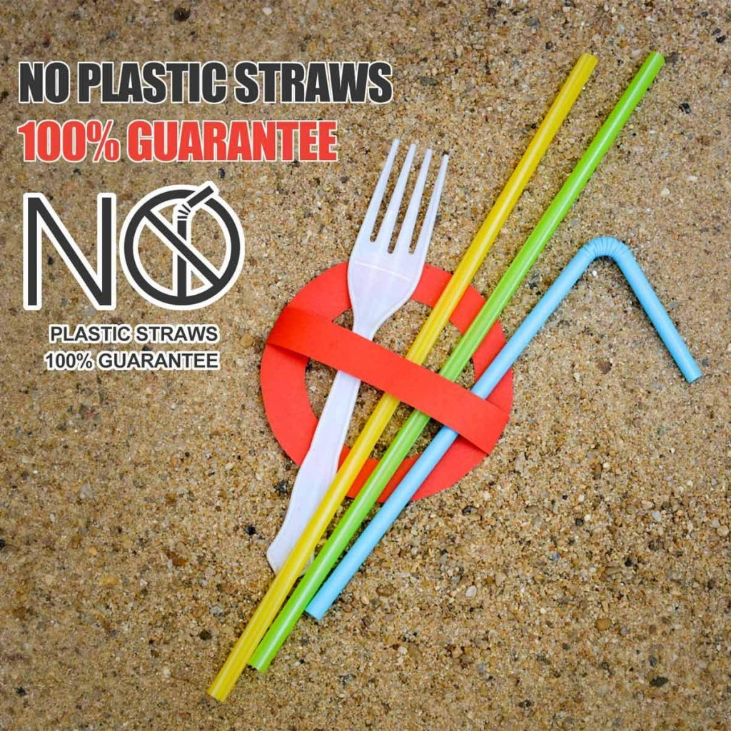 , Plastic Straw Bans // People With Disabilities // Being Flexible