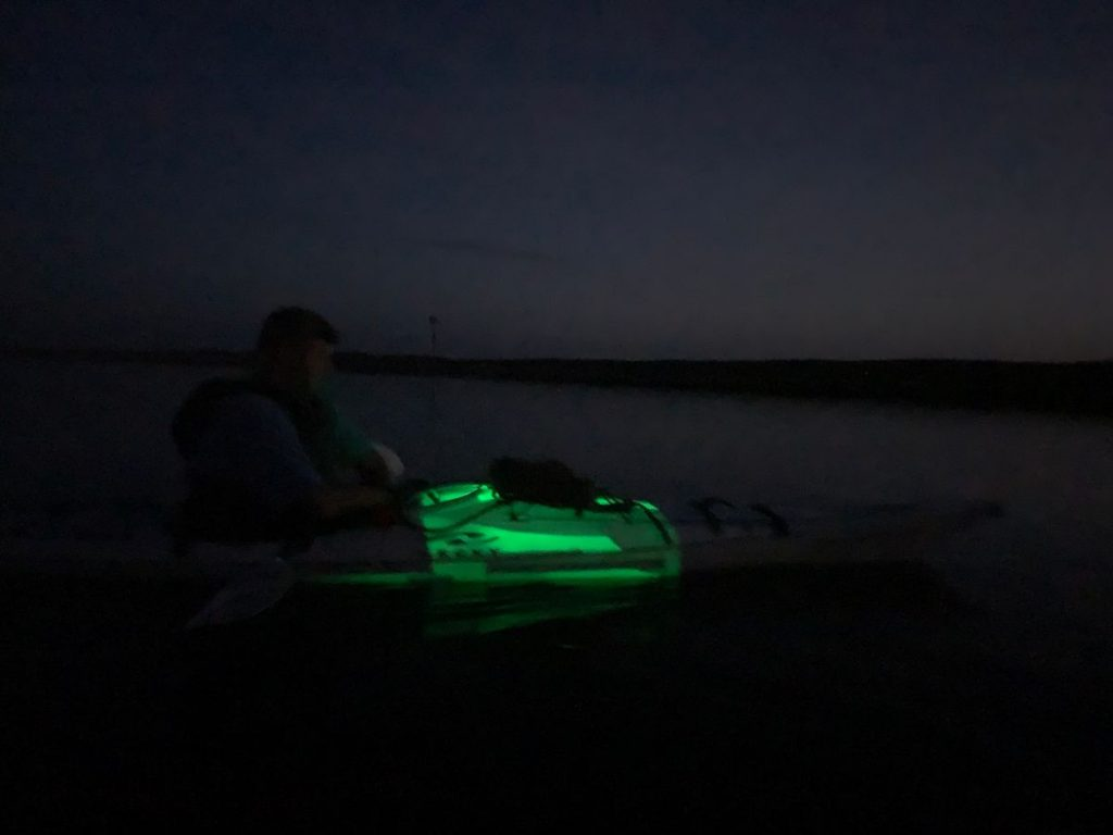 , Oklawaha River Rodman Reservoir Drawdown Paddle // Full Moon Kayaking
