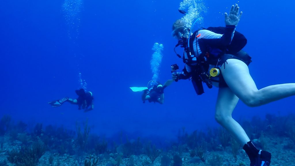 scuba diving on Cuba's North Shore, SCUBA Diving in Cuba // Pristine Reefs on the North Shore
