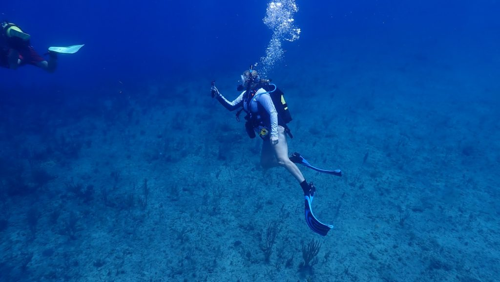 , SCUBA Diving in Cuba // Spectacular Shore Diving