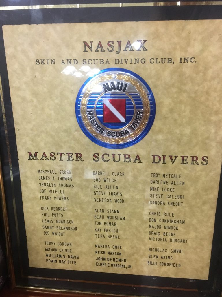 dive club, Why You Should Join a Dive Club // Dive Club Benefits // Safety in Numbers