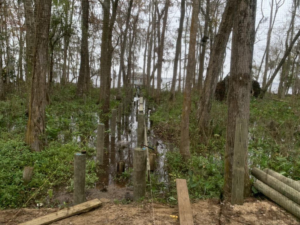 Building a Dock Across a Cypress Swamp Covid-19 Sanity, Building a Dock Across a Cypress Swamp // Expanded Living Space // Sanity During Quarantine