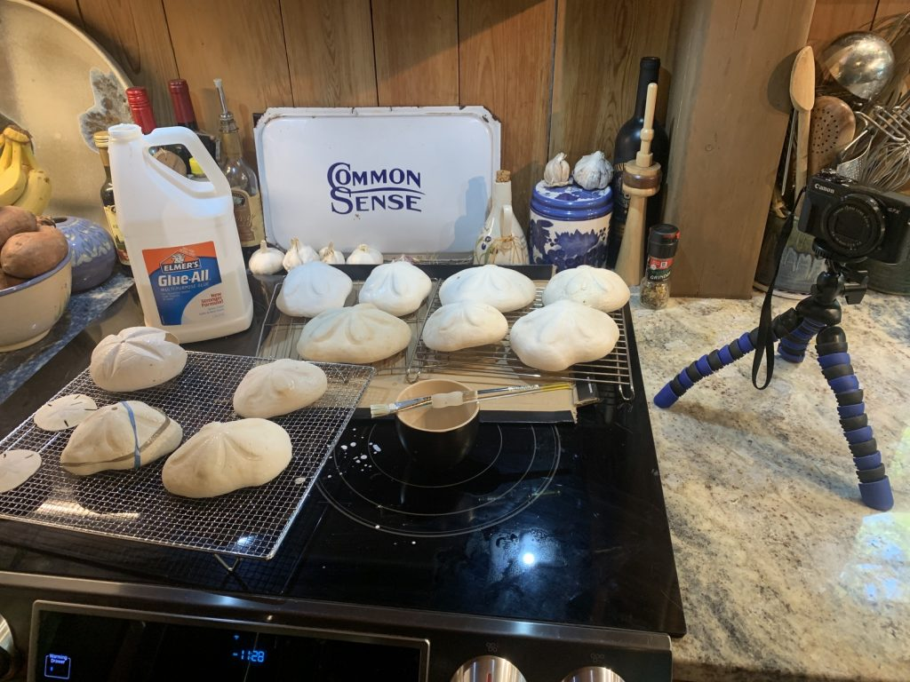 Stabilizing and Preserving Sand Dollars and Sea Biscuits, How To Stabilize and Preserve Delicate Sand Dollars and Sea Biscuits